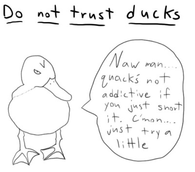 do-not-trust-ducks