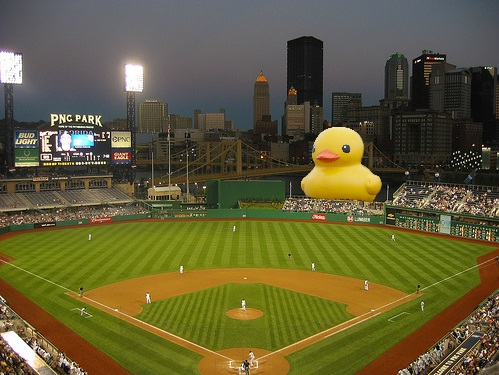 duck pnc