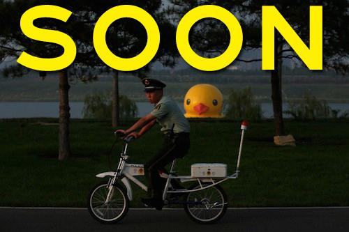 spy duck