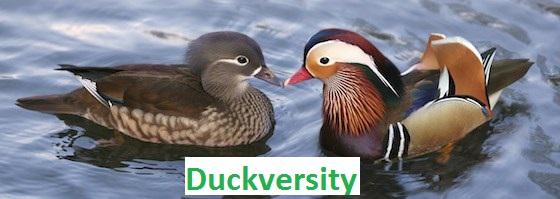 Duckversity